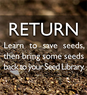 Seed Library Return
